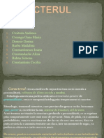 Caracterul Power Point (2)