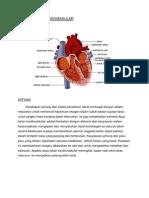 Daya Tahan Kardiovaskular