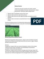 Peranan Biologi Dalam Bidang Pertanian