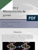 Mutación y Manipulación de genes