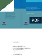 CurriculumBasica Decreto Nº 232