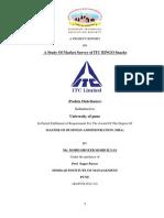 market survey of iitc