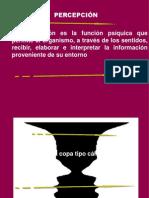 Percepción visual ViejaChica 05 2012 (1)