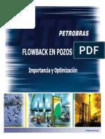 Proceso Por Flowback