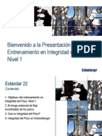 Well Integrity Standard 22 Spanish
