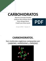 Equipo 6 Carbohidratos