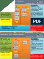 Formato Ficha Procedimientos Calidad 100113