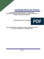 Monografia Adriane FACCIOLLA 12.11.12 Modificada Pelo Rodrigo Zobom (1)