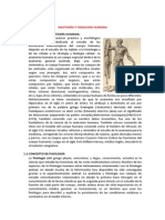 Anatomia Fisiologia Humana (1)