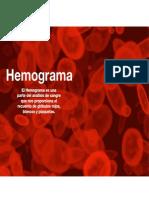 AV 37 Hemograma