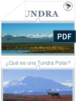 tundra 3.pptx