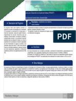 prosoft_resumen_ejec_2012_2013
