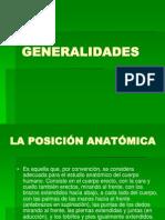 GENERALIDADES. anatomía