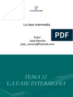 Fase Intermedia Procedimiento Procesal Penal Venezolano