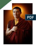 Words of Advice to the Dhagpo Sangha Karmapa Thaye Dorje.pdf
