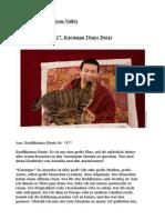 Ein Buddha im Silicon Valley. Interview mit dem 17. Gyalwa Karmapa Thaye Dorje.pdf