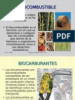 Diapositivas Biocombustibles
