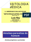 REY - Parasitologia - 05