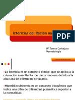 Ictericias Del RN