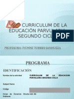 Presentacion Programa Curriculum