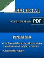 Periodo Fetal Nuevo