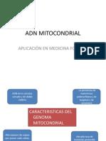Adn Mitocondrial1.0