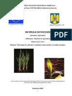 Tehnologia de cultivare a cerealelor pentru boabe în condiţii ecologice