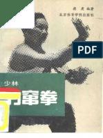 Chien-Teh Shaolin Fist Leopard-1990
