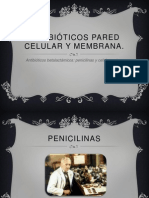 Penicila y Cefalosporinas