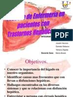 hepatico presentacion