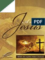 Livro a Vida de Jesus