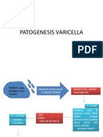 Patogenesis Varicella