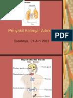 Penyakit Kelenjar Adrenal2