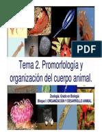 Presentacion Tema 2, Zoologia