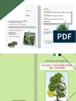 Diptico_Programa_Castaño_2013