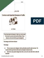 Cattle Common Disease