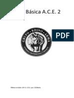 Manual básico A.C.E.2