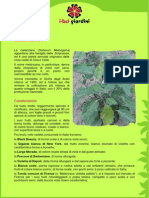 Melanzana.pdf