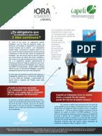 Pildora de Conocimiento Laboral - Junio 2013 - 02