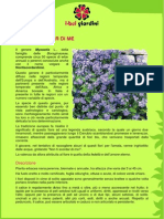 NonTiScordarDiMe.pdf