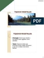 Cap 11 -Tejidos Vegetales