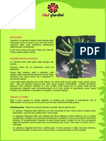 Opuntia.pdf