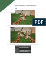 Aprenderemos a extraer imágenes y a deformarlas con la herramienta deformación de posición libre
