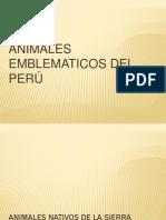 Animales Emblematicos Del Peru