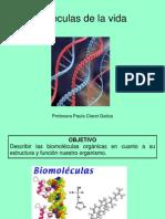 Biologia Comun - Biomoleculas Organicas e Inorganicas