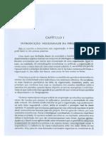 1Robert Michels - Introdução a Organização