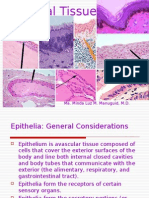 His to Epithelial