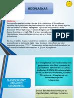 MICROBIOLOGIA MYCOPLASMAS(1)