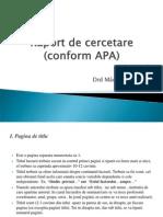 Raport de Cercetare APA