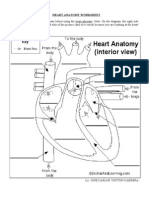 Heart Anatomy Worksheet